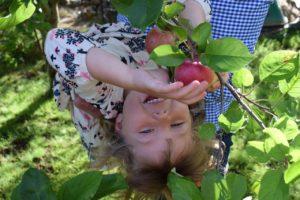 Детям-здоровая пища