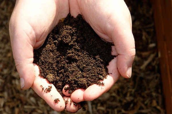 Одежда из органических материалов перерабатывается в компост